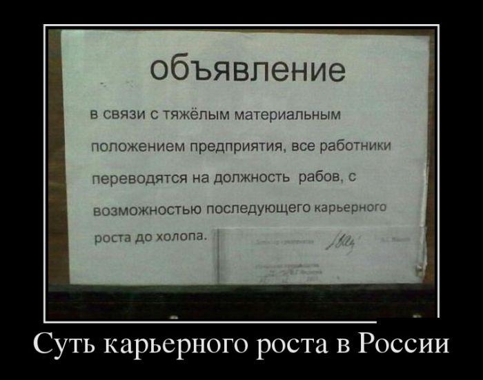 Демотиваторы. (10)