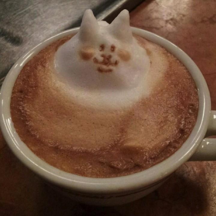 3D Latte Art (11)