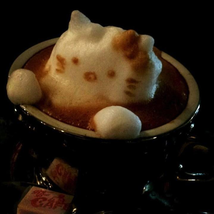 3D Latte Art (8)