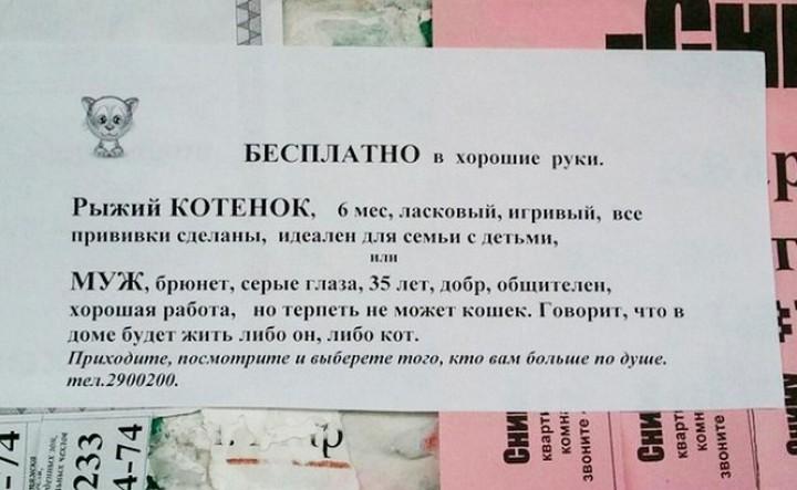 Прикольные надписи и обьявления. (14)