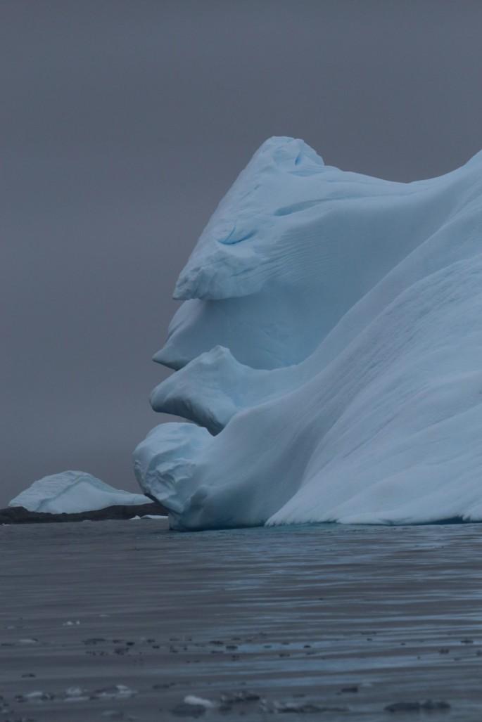 Айсберг похожий на голову человека (2)