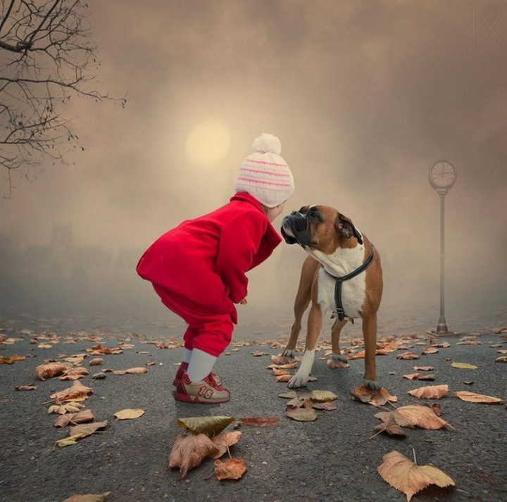 фото, природа, красивые фото природы, фотопейзажи, осень (13)