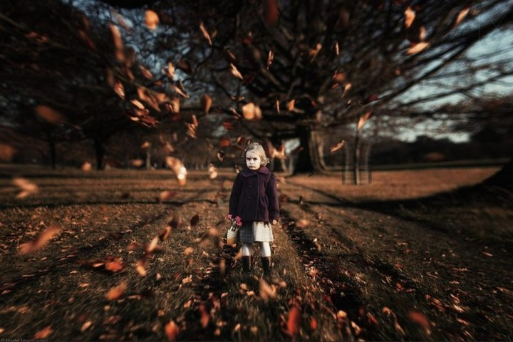 фото, природа, красивые фото природы, фотопейзажи, осень (7)