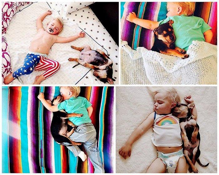 фото, дети, животные (1)