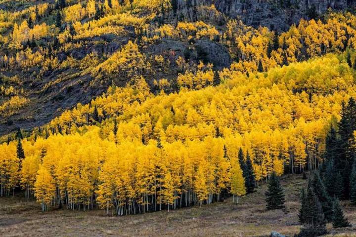 фото, природа, красивые фото природы, фотопейзажи, осень (4)
