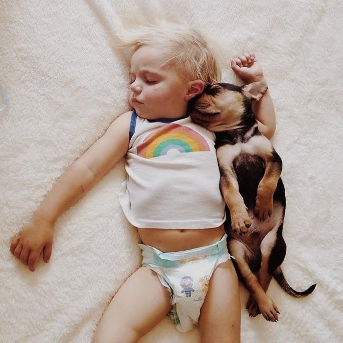 фото, дети, животные (2)