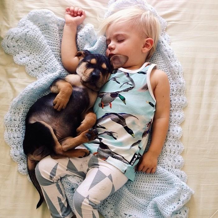 фото, дети, животные (3)