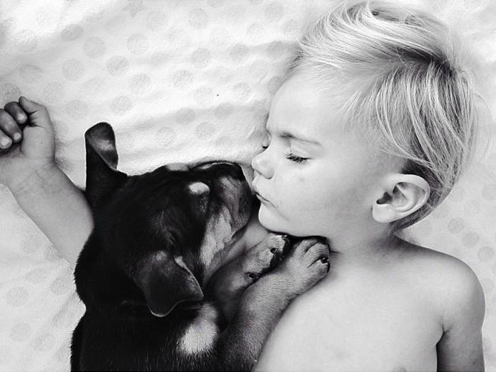 фото, дети, животные (5)
