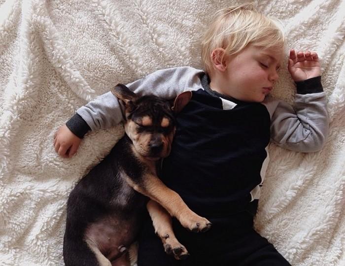 фото, дети, животные (6)