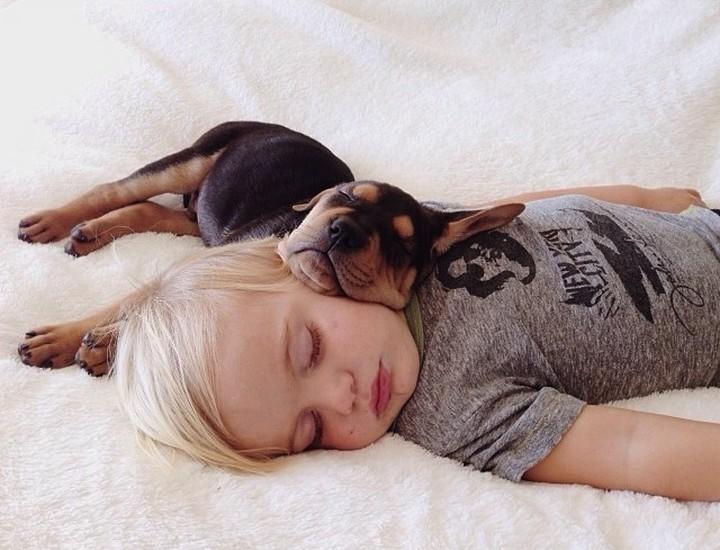 фото, дети, животные (8)