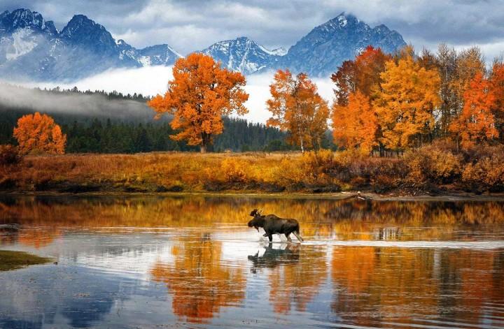 фото, природа, красивые фото природы, фотопейзажи (6)