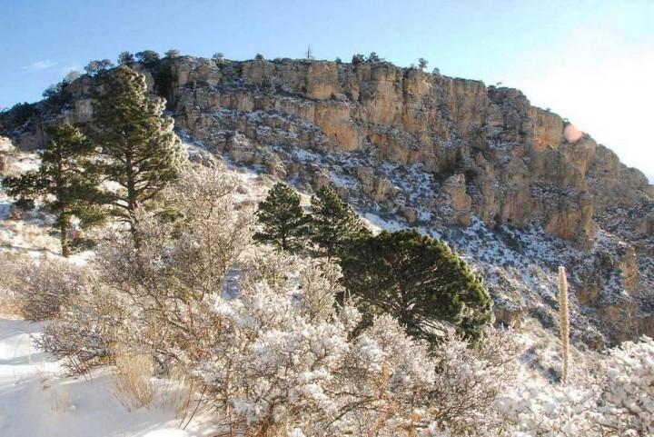 фото, природа, красивые фото природы, фотопейзажи, зима (11)