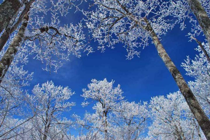 фото, природа, красивые фото природы, фотопейзажи (2)