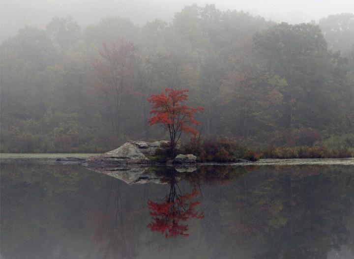 фото, природа, красивые фото природы, фотопейзажи, обои (9)