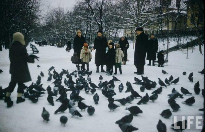 фото, СССР, ностальгия, ретро фото, дети (7)