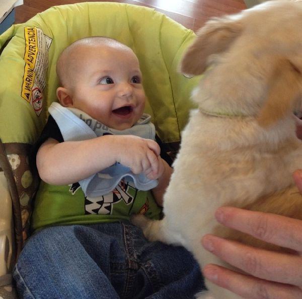 дети, животные (1)