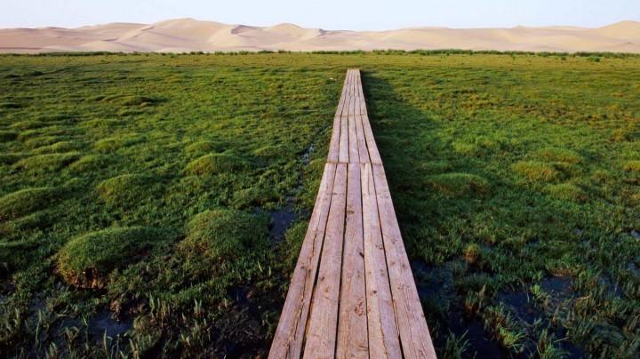 фото, природа, красивые фото природы, фотопейзажи (5)