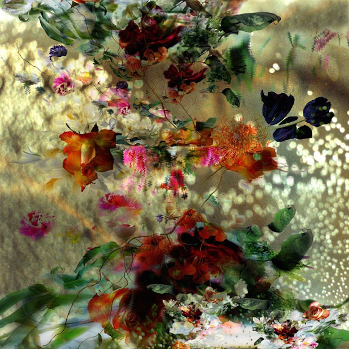 цветы, красивые фото цветов (9)