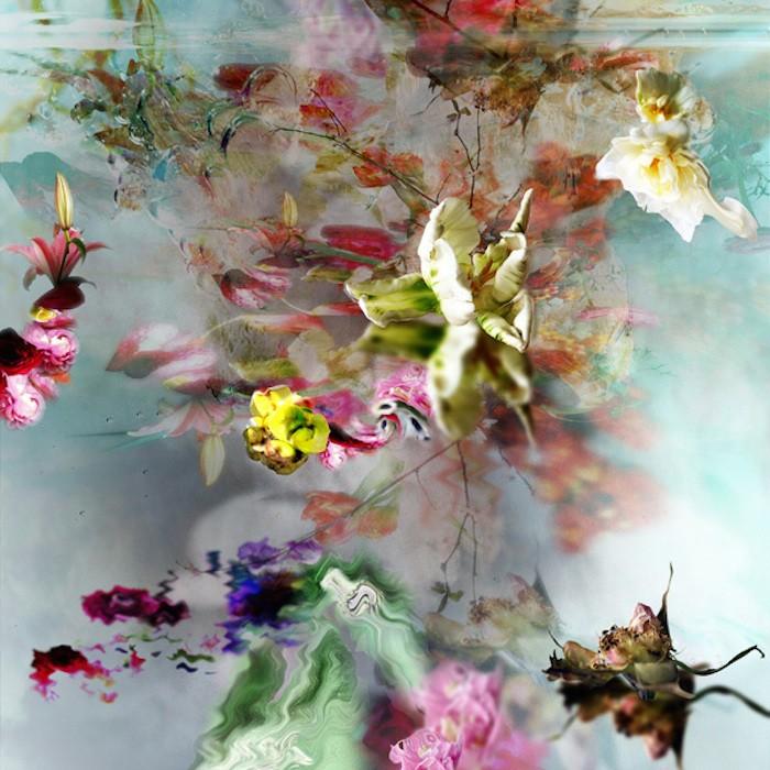 цветы, красивые фото цветов (5)