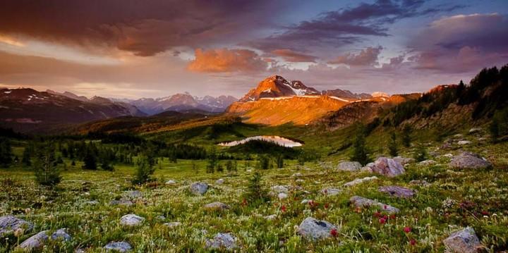 природа, красивые фото природы, фотопейзажи (13)
