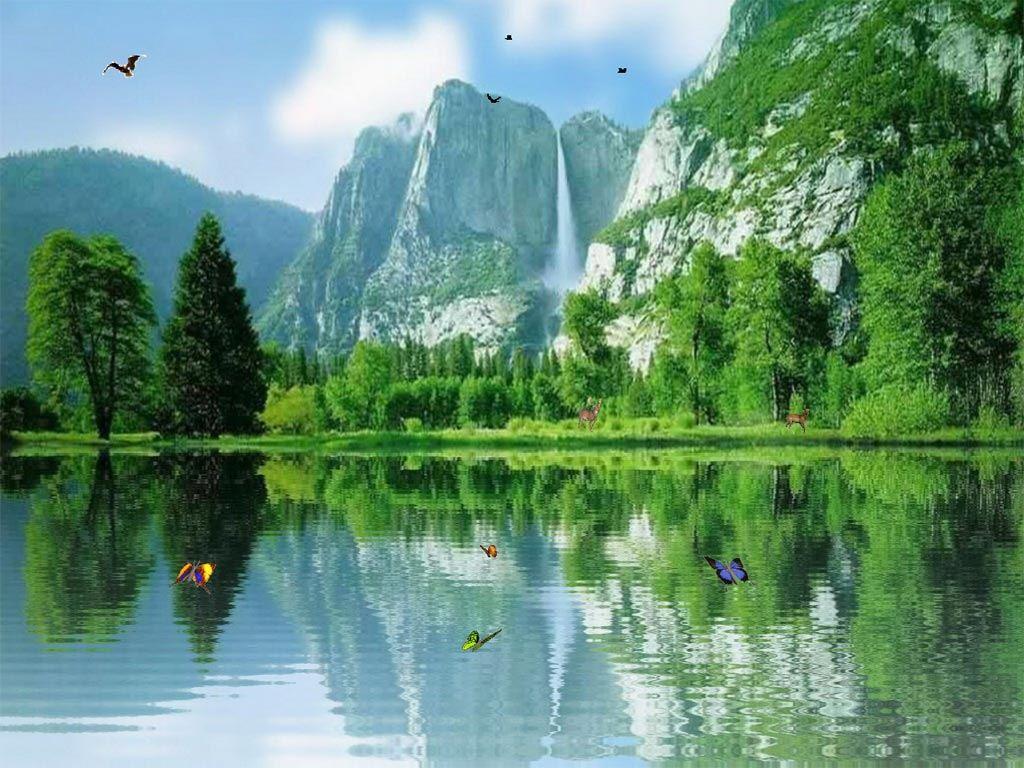 Анимированная открытка природа