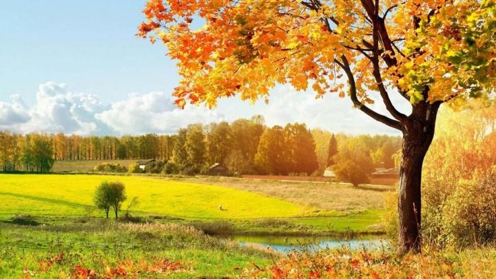природа, красивые фото природы, фотопейзажи, осень (15)