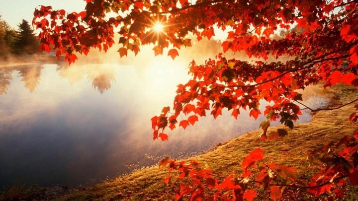природа, красивые фото природы, фотопейзажи, осень (14)