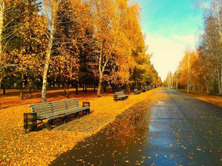 природа, красивые фото природы, фотопейзажи, осень (3)