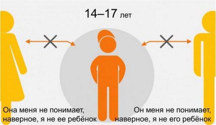 иллюстрации, инфографика (5)