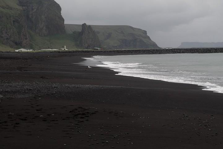 Черный пляж в Исландии (4)