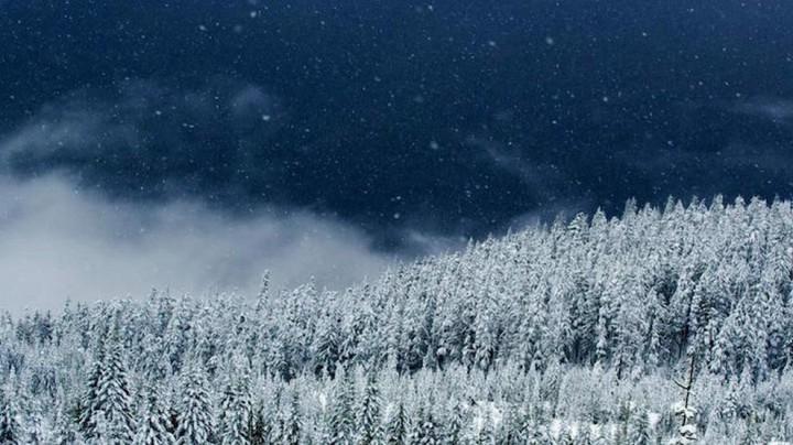 природа, красивые фото природы, фотопейзажи, зима (16)