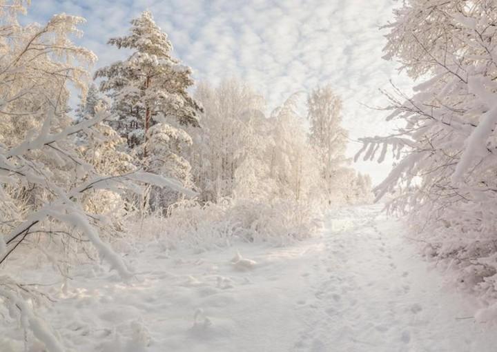 природа, красивые фото природы, фотопейзажи, зима (7)