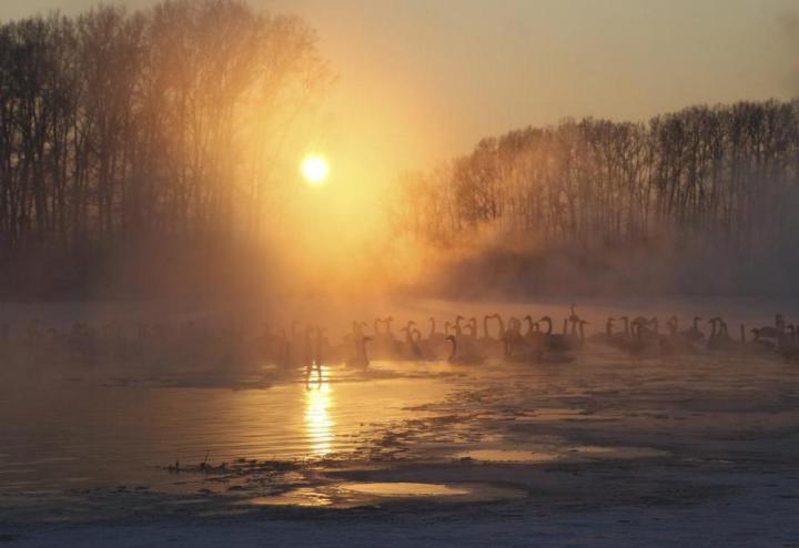 природа, красивые фото природы, фотопейзажи (2)