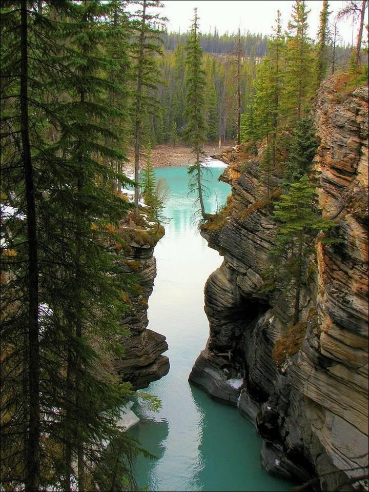природа, красивые фото природы, фотопейзажи (21)