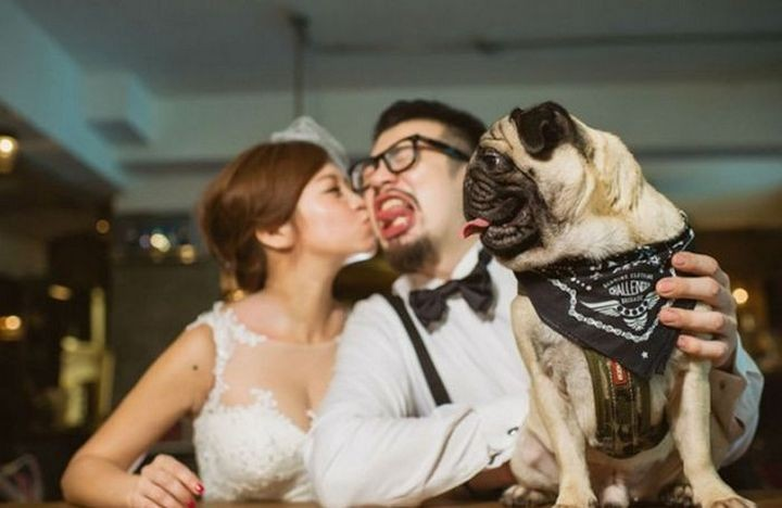 Прикольные фото, свадьбы (11)