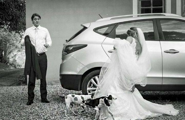 Прикольные фото, свадьбы (6)