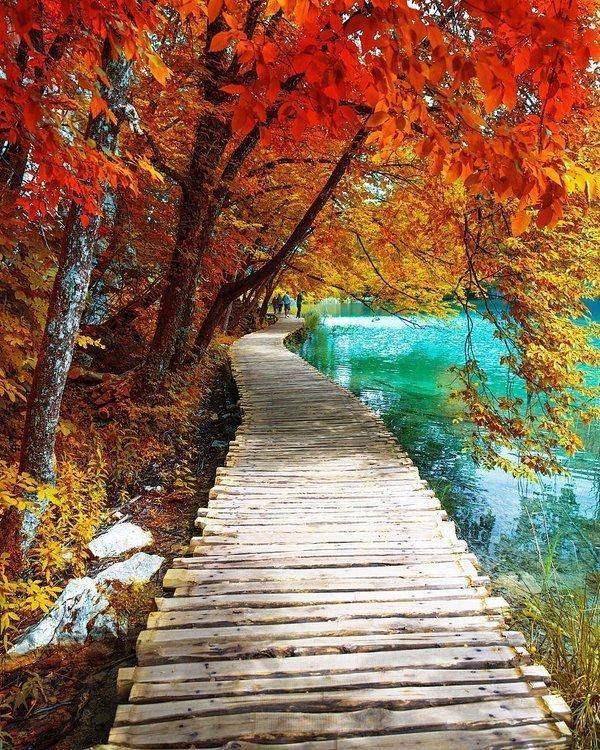 природа, красивые фото природы, фотопейзажи, осень (25)
