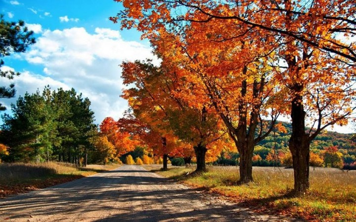 природа, красивые фото природы, фотопейзажи, осень (17)