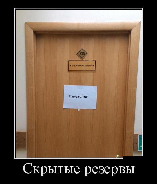 Демотиваторы (7)