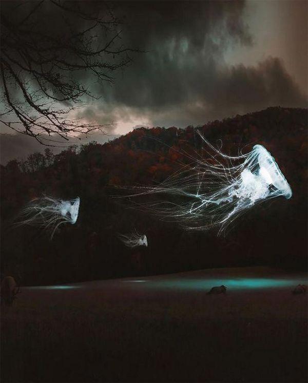 креатив, фотоманипуляции (18)