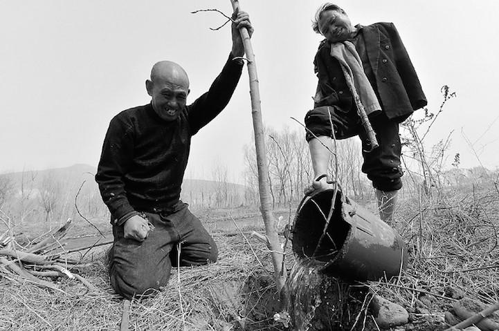 Два китайца за 12 лет посадили 10 000 деревьев